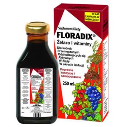 Floradix żelazo i witaminy 250 ml