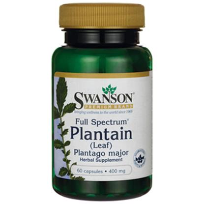 Obrazek SWANSON Plantain 60 kaps. 400mg