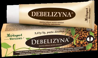 Obrazek Debelizyna pasta  100 g