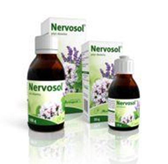 Obrazek Nervosol płyn doustny 100 g